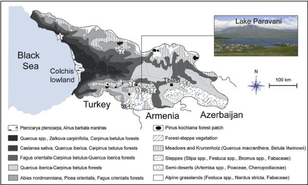 Fig-2-Map-of-Georgia-showing-the-main-natural-vegetation-groups-modi-fi-ed-from-Bohn