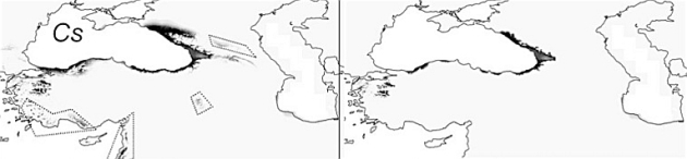 Palaeoclimatic models help to understand current distribution of Caucasian forest species